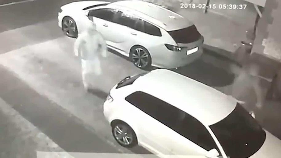Vandals caught in shocking CCTV