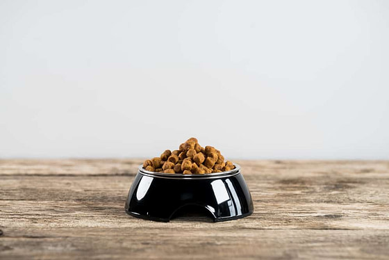 Pile of dry dog food in bowl on wooden floor