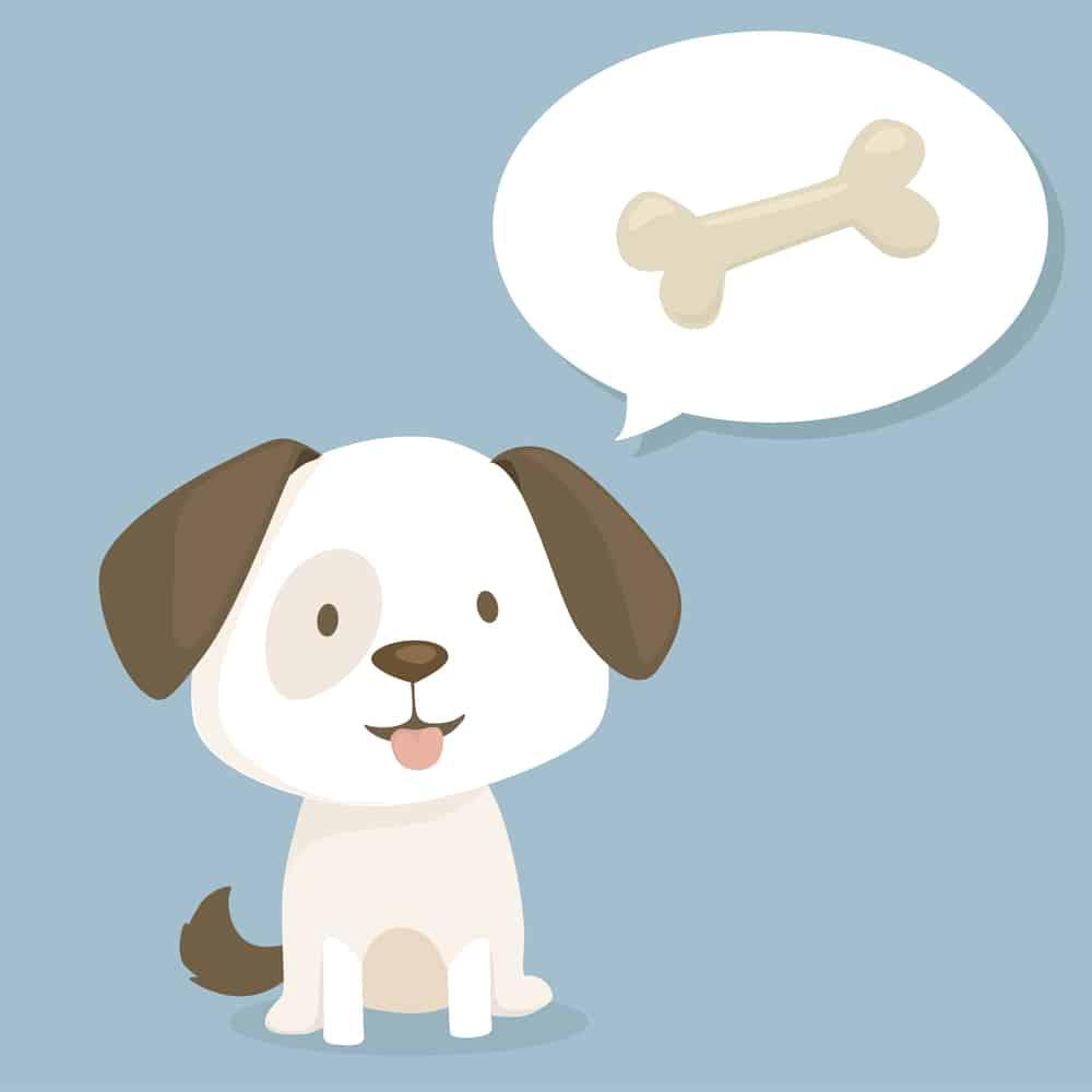 Puppy thinking about bone