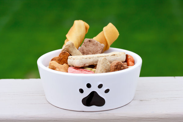 how to soften dog food