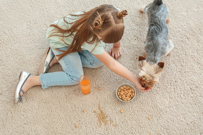 Careless little girl with dog eating nuts and drinking juice while sitting on carpet